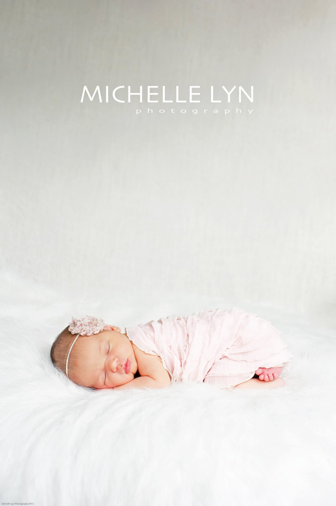 Michelle Lyn Photography {Newborn Photographer}